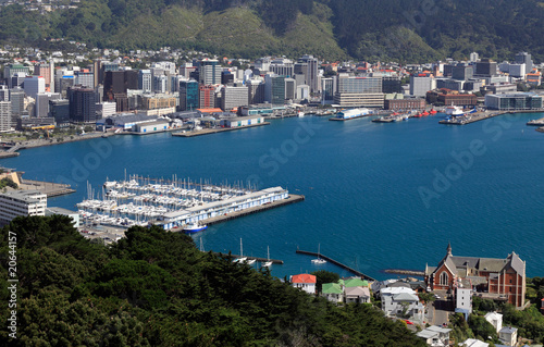 Wellington City and Harbour