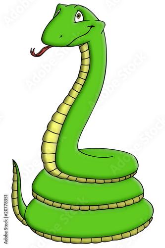 Schlange, Mamba, Dschungel, gefährlich, giftig, Gift Poster