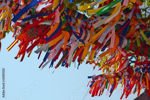Foto op Aluminium Paradijsvogel bloem tree with colored ribbons