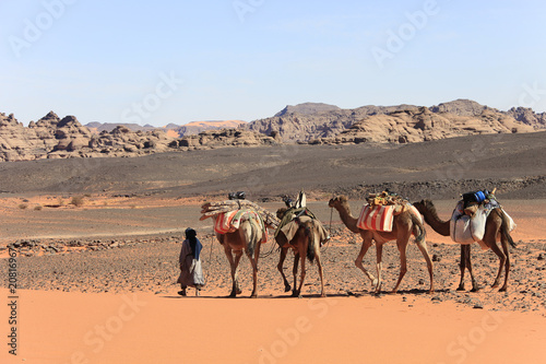 Fotografija  Libye, randonnée chamelière dans l'Akakus