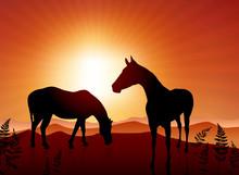Horses Grazing On Sunset Background