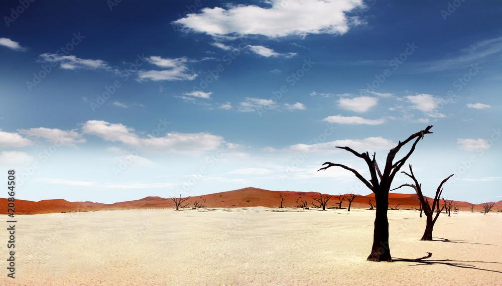 Fototapety, obrazy: Einsame Wüste