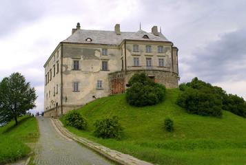Fototapeta na wymiar The Middle Ages castle in Ukraine