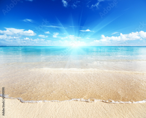 Staande foto Strand sand of beach caribbean sea