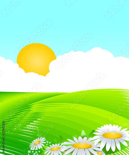 Photo sur Toile Bleu clair Décor ciel bleu et champs verts