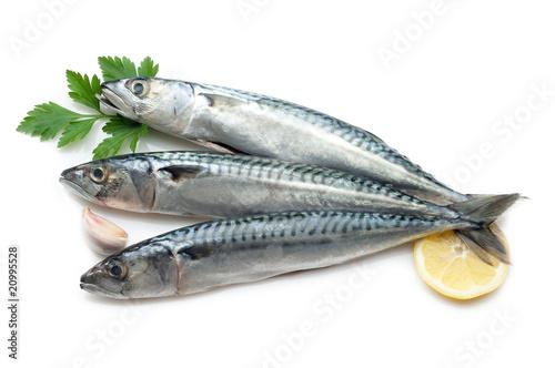 Papiers peints Poisson mackerel ready to cooking