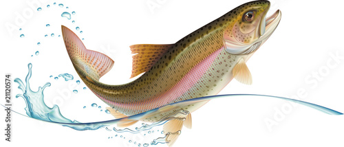 Jumping trout Wallpaper Mural