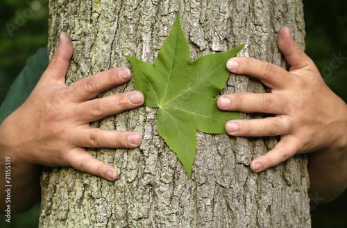 Fotografie, Obraz  Tree hugging environmentalist