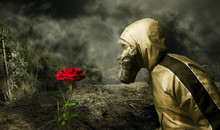 Man In A Gas Mask Looking At A Rose