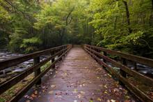 Bridge Over Mountain Stream In Great Smoky Mountains
