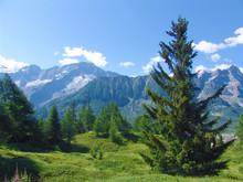 Passo Del Tonale - Alpi