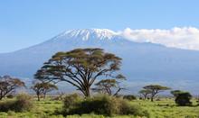 Paesaggio Africano Amboseli Kenya