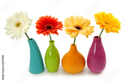 Fototapety, obrazy: Flowers in vases isolated on white background