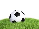 Piłka na pięknej zielonej trawie