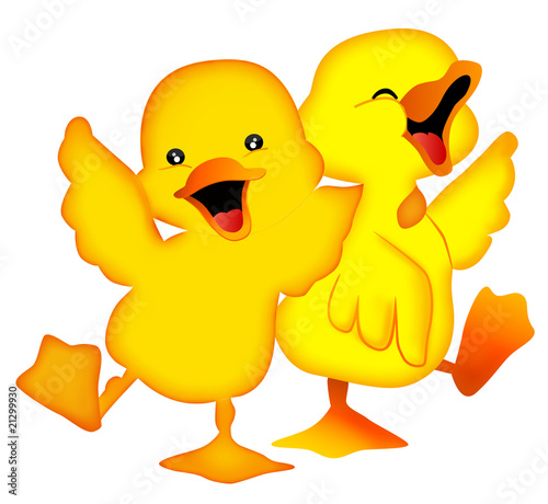 Photo  duckling