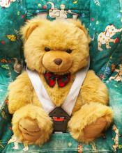 Bear In An Automobile Armchair
