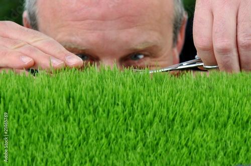 Fotografering  Rasenpflege