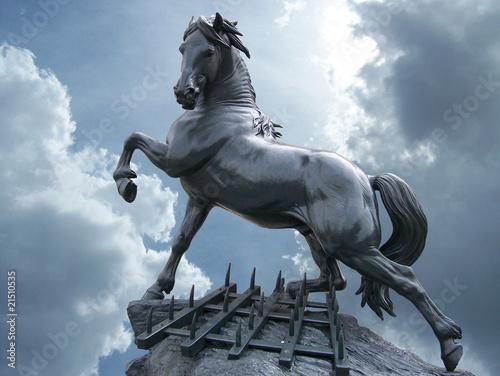 Fototapeta statua cavallo obraz