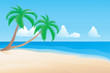 Palmtree on the beach