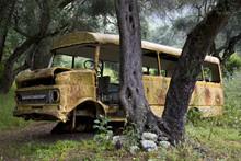 Abandoned School Bus