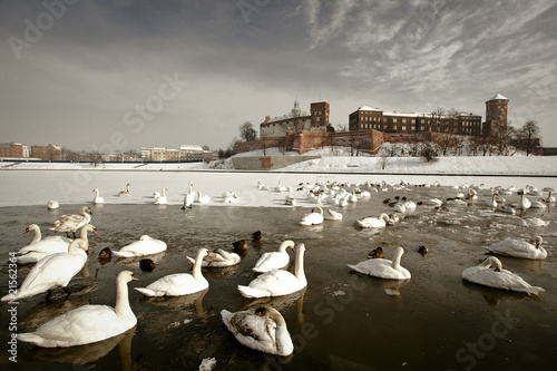 Wall Murals Krakow Wawel Castle - Landmark of Krakow in a winter scenery