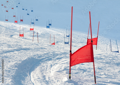 Cuadros en Lienzo  Ski gates with parallel slalom