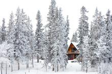 Christmas Cottage In Winter Wonderland