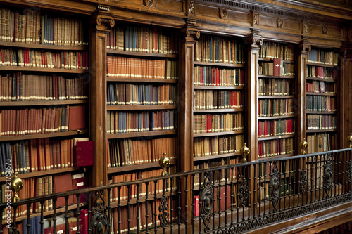 Fotografie, Obraz  Biblioteca libros