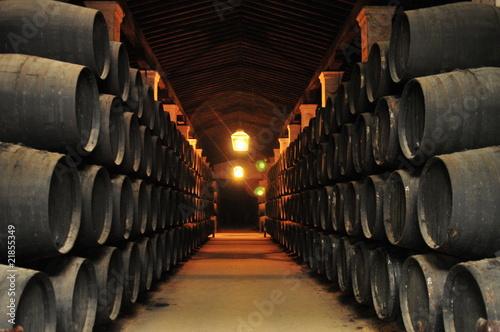 caves de jerez de la frontera, andalousie Fototapeta