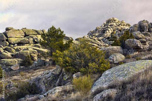 Sierra de la Cabrera. Madrid Fototapet