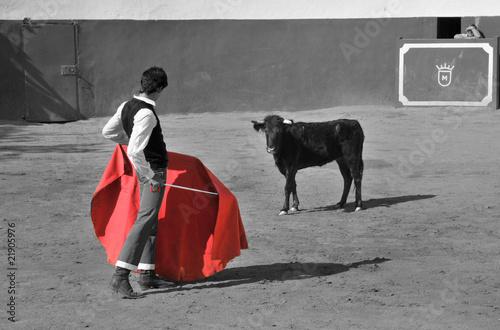 Poster Stierenvechten la capea