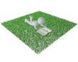 Lesen im Gras