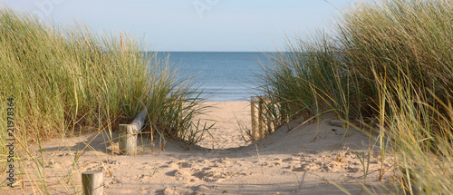 Canvas Prints Beach Beach Path Through Dunes