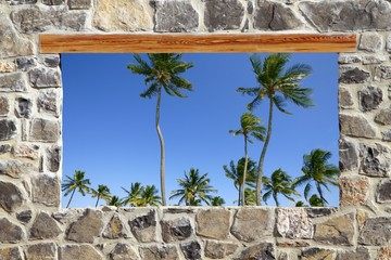 Fototapeta stone masonry wall window tropical palm trees view