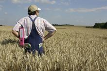 EU - Agrarförderung