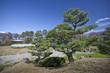 canvas print picture - Japanese Garden 01