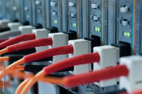 Fotografie, Obraz  glasfaserkabel an server