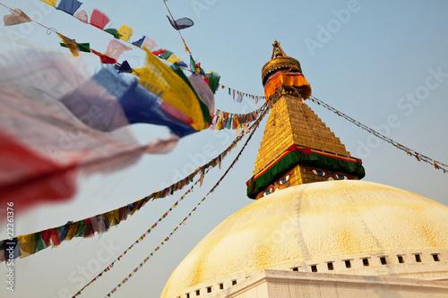 Staande foto Nepal Stupa