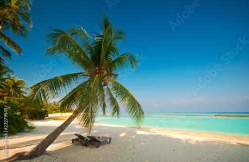 Foto-Kissen - Tropischer Traumstrand