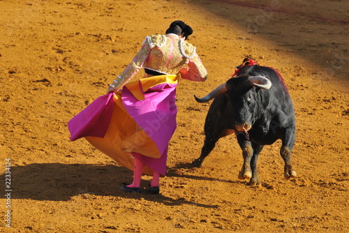 Poster Bullfighting Corrida - Torero dancing with the Bull