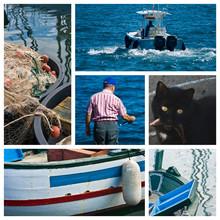 Blu - Mare & Pesca