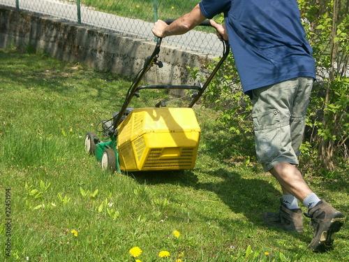 Papiers peints Jardin tondre la pelouse
