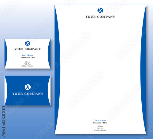 Charte Graphique Assurances Et Affaires Papier Et Carte Visite