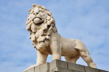 Löwe - Statue