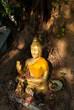 buda in kalasin of thailand