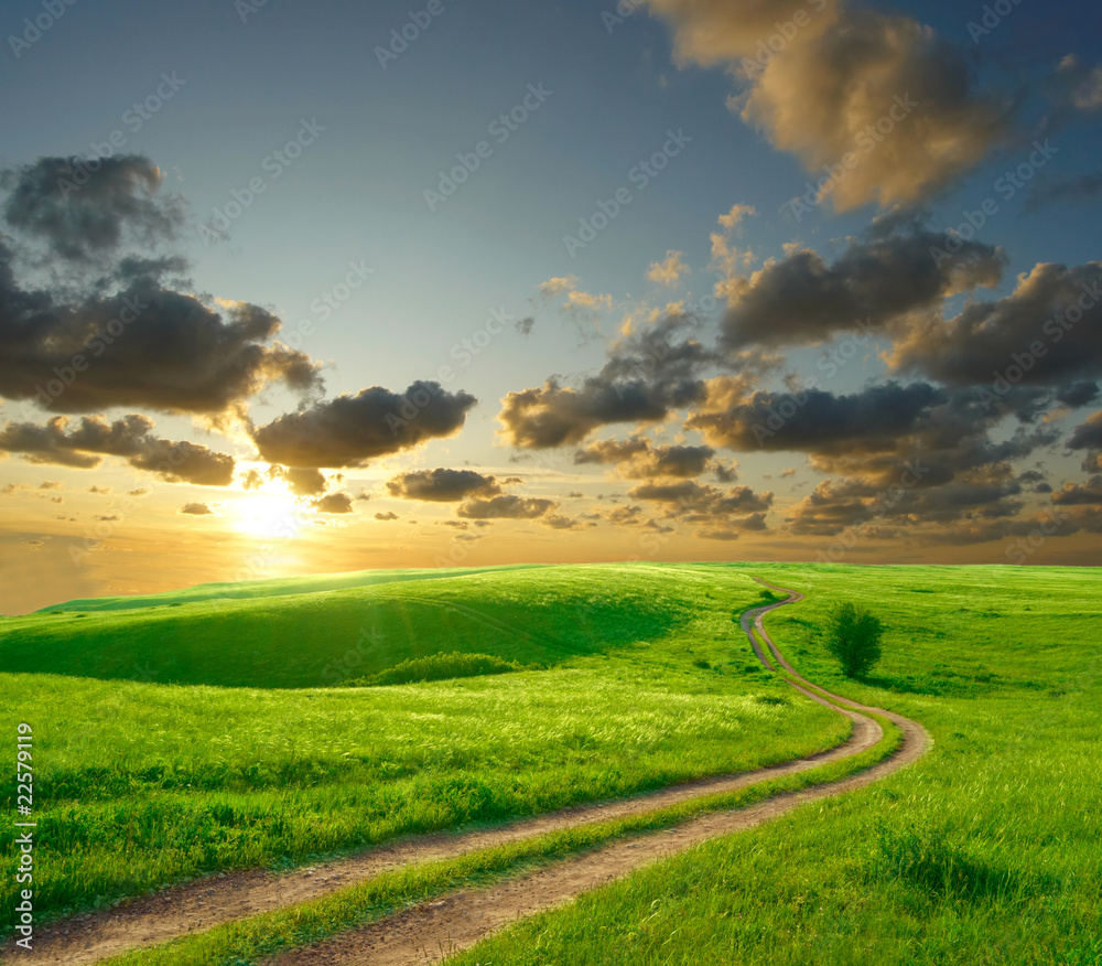 Fototapety, obrazy: Summer landscape with green grass, road and clouds