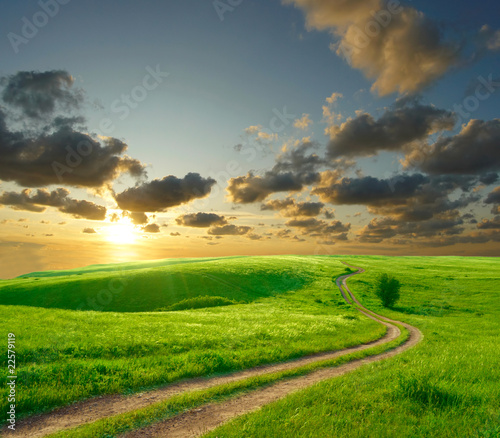 Fototapeta Summer landscape with green grass, road and clouds obraz