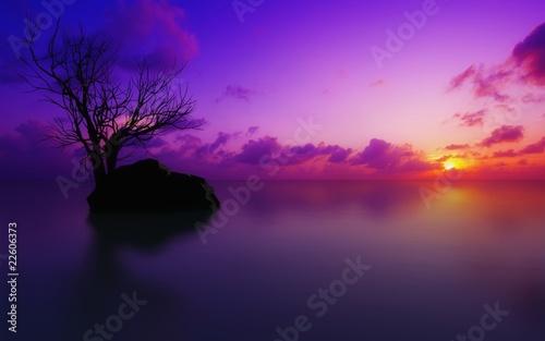 Foto op Canvas Candy roze sunset