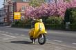 Gelber Roller