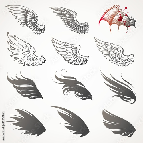 Fotografie, Obraz  Vector set of wings